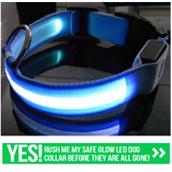Get Your FREE Glow LED Dog Collar.