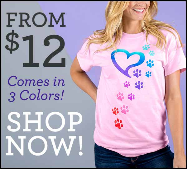 Rainbow Paws Top From $12