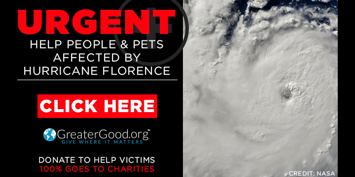 Hurricane Florence - Help People and Pets Now