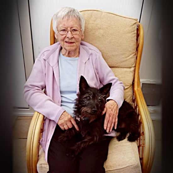 An octogenarian with a little black dog on her lap