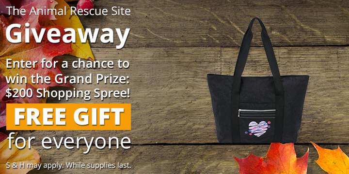 Enter for a free gift and a chance to win a 200-dollar shopping spree!