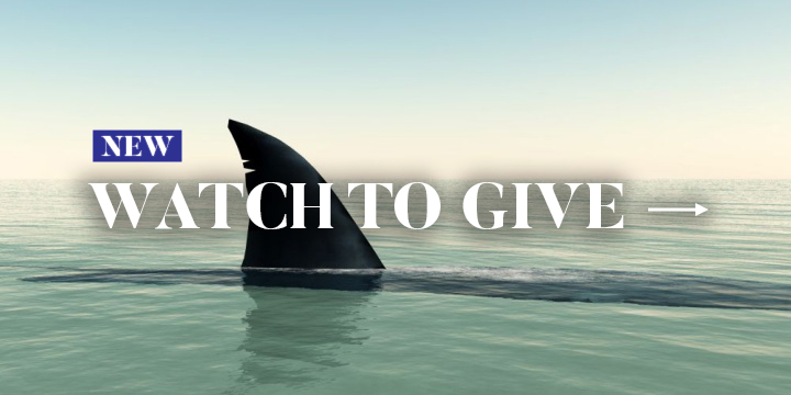 Watch To Give - Help Sharks Now
