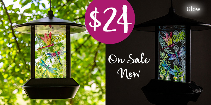 Dancing Dragonflies Solar Light Bird Feeder