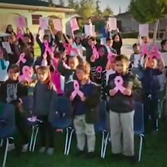 Entire elementary school with pink ribbons