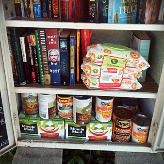 Little Free Library With Canned Goods