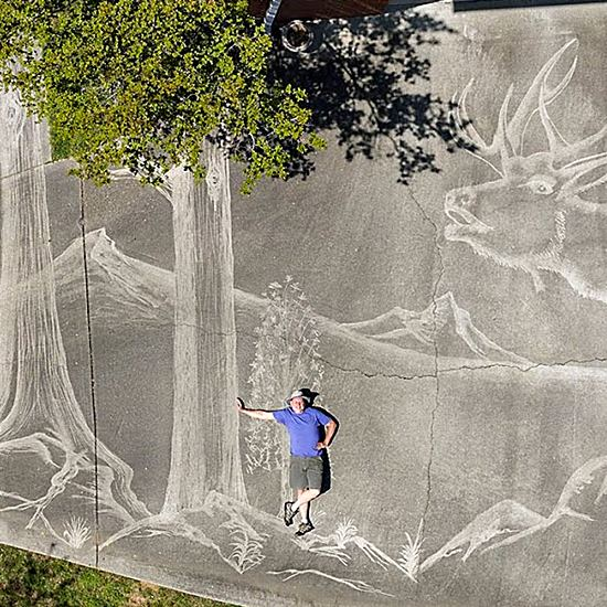 Incredible pressure-washed art in a driveway
