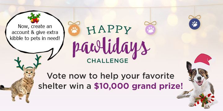 Happy Pawlidays Shelter Challenge - Vote today!