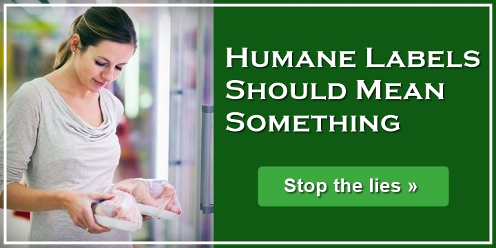Humane labels should mean something - stop the lies