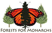 Forests for Monarchs