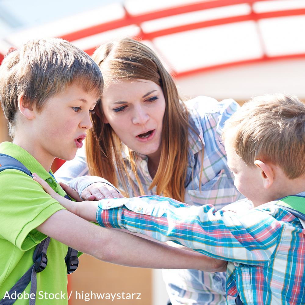 Implement Conflict Resolution Programs for Schoolchildren