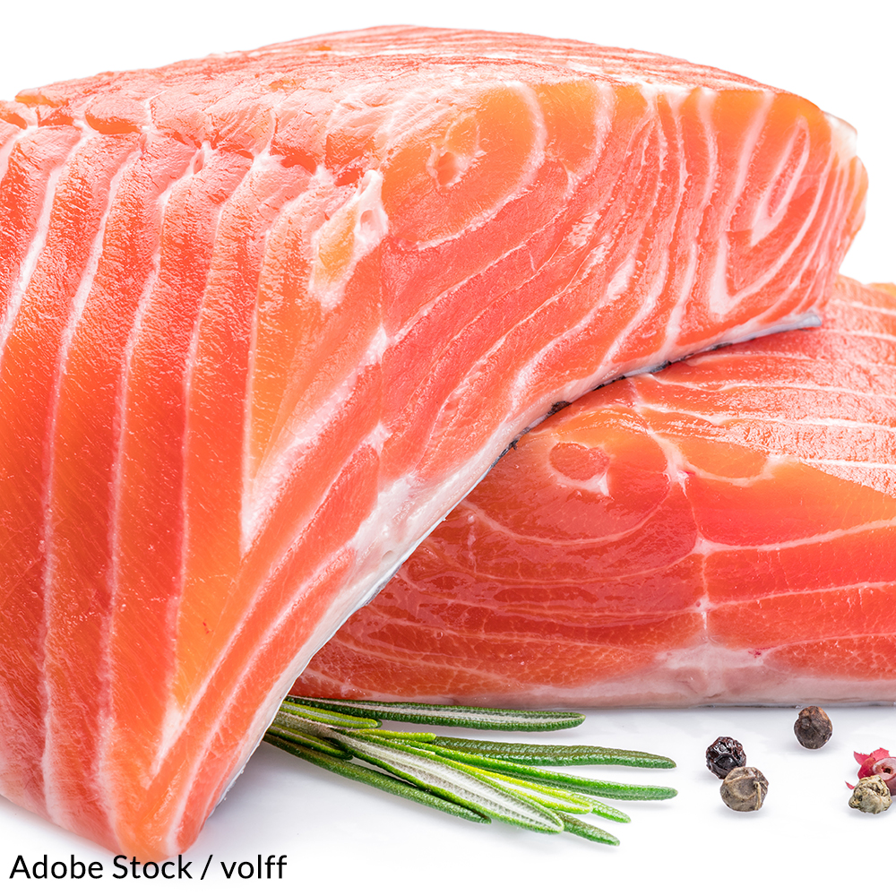 Keep Genetically Engineered Fish Off The Dinner Table!