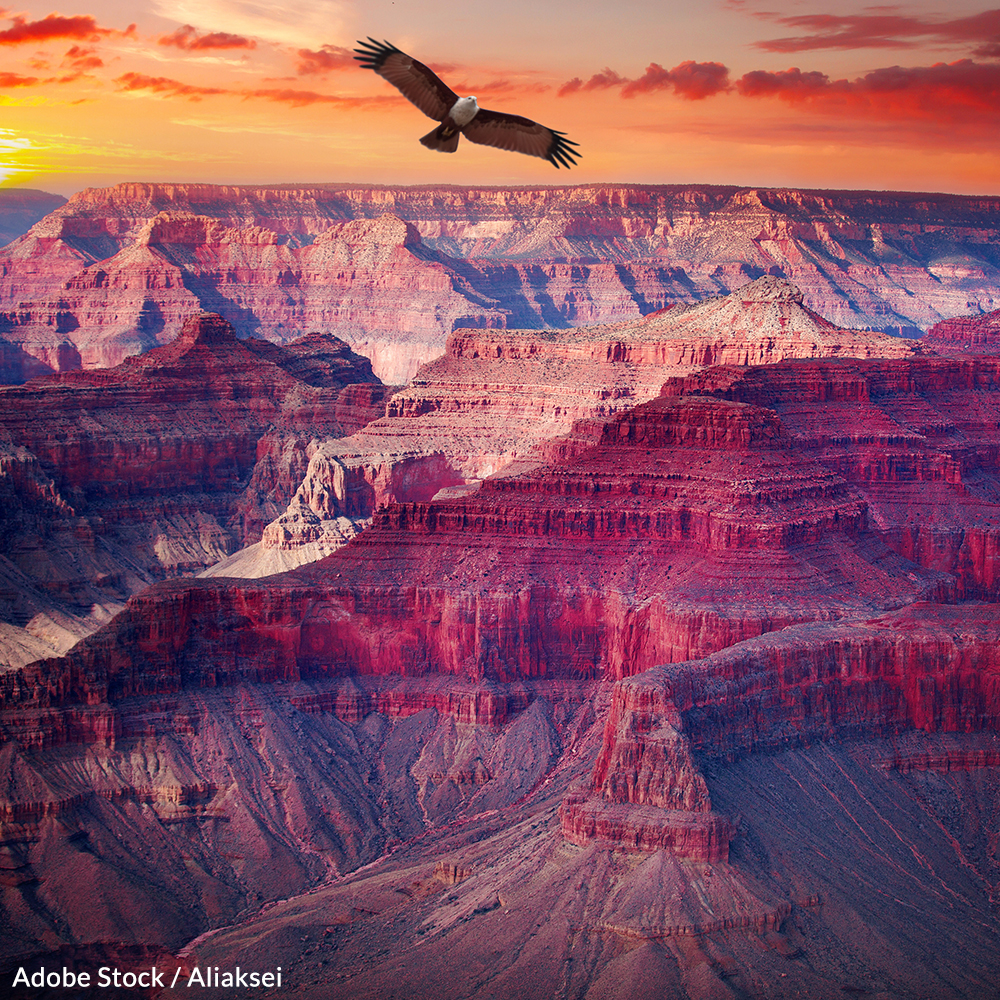 Don't Allow the Grand Canyon to Become a Mining Site!