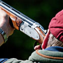 "Pigeon Shooting: Another Senseless ""Sport"""