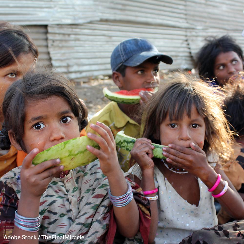 Help End the Global Food Crisis
