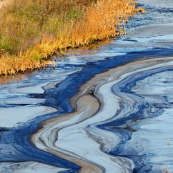 Don't let Shell Oil continue to wreak havoc on Nigeria with its perpetual oil spills!
