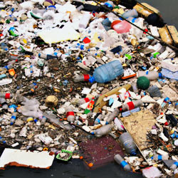 Sign the petition in support of the Trash Free Seas Act of 2011!