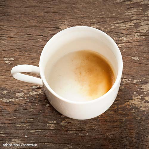 Ensure Coffee Survives Climate Change