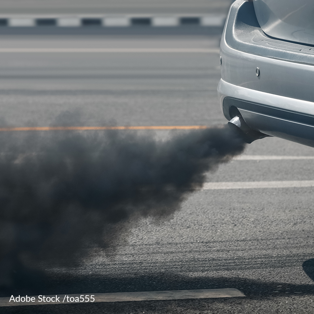 Demand Higher Fuel Efficiency Standards To Reduce Air Pollution And Save Lives