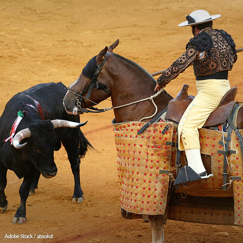 Stop Horses from Being Victims of Abuse and Torture in Bullfights!