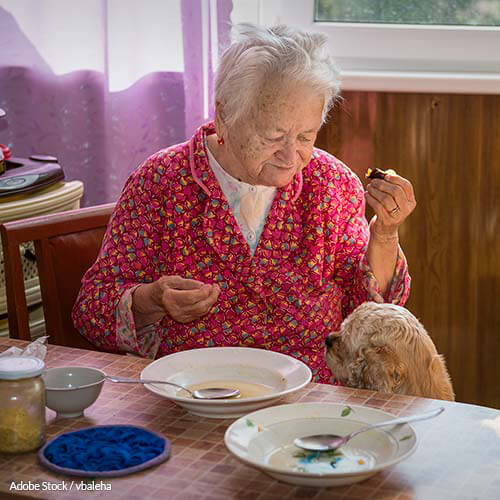 Cutting Meals On Wheels Hurts Elderly And Low Income Americans