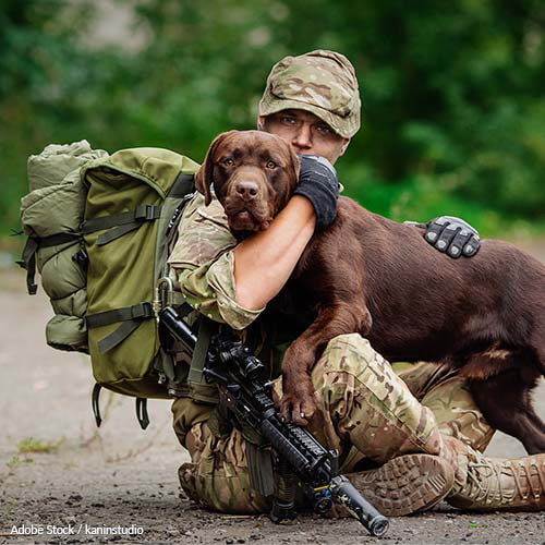 Our service members shouldn't have to choose between their pets and their homes. Take action now!