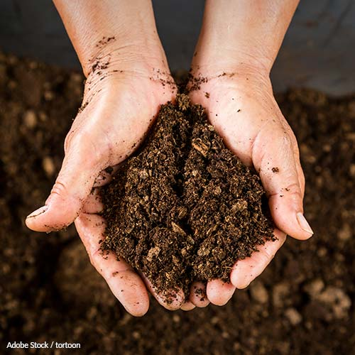 Make Composting as Common as Trash Pick-Up!