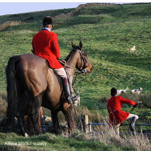End Hound Hunts In The UK For Good!