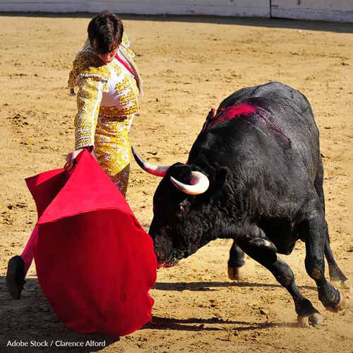 Ban bullfighting and running with the bulls worldwide. This bloody spectacle needs to be put behind us!