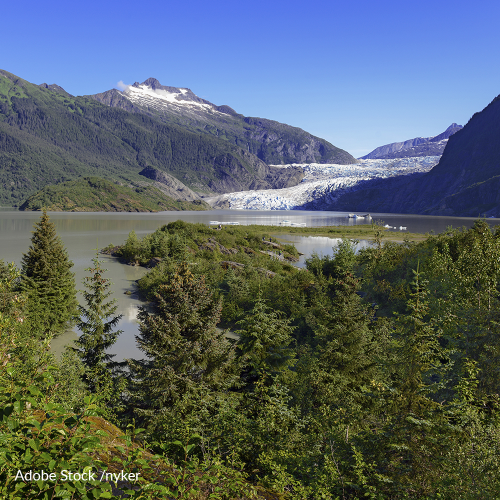 "Reinstate the ""Roadless Rule"" To Protect Tongass National Forest From Logging"
