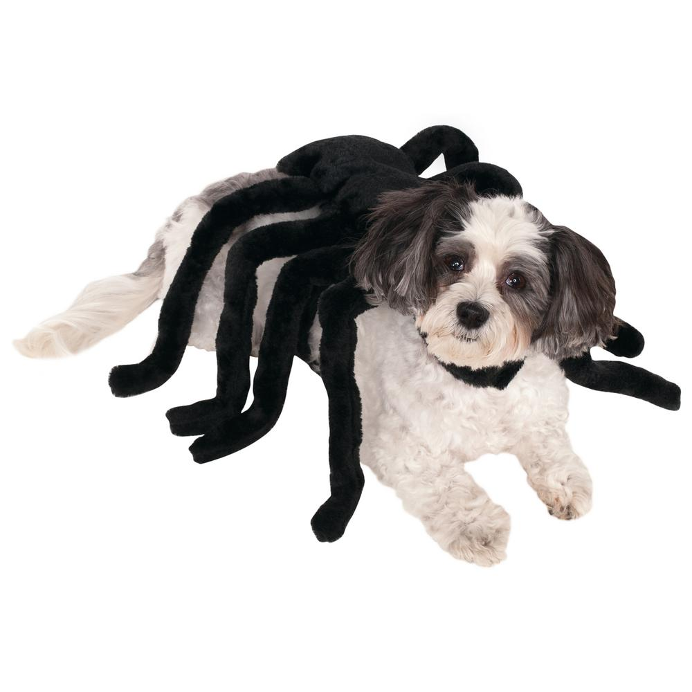 Tap ...  sc 1 st  The Animal Rescue Site - GreaterGood & Spider Dog Costume : The Animal Rescue Site