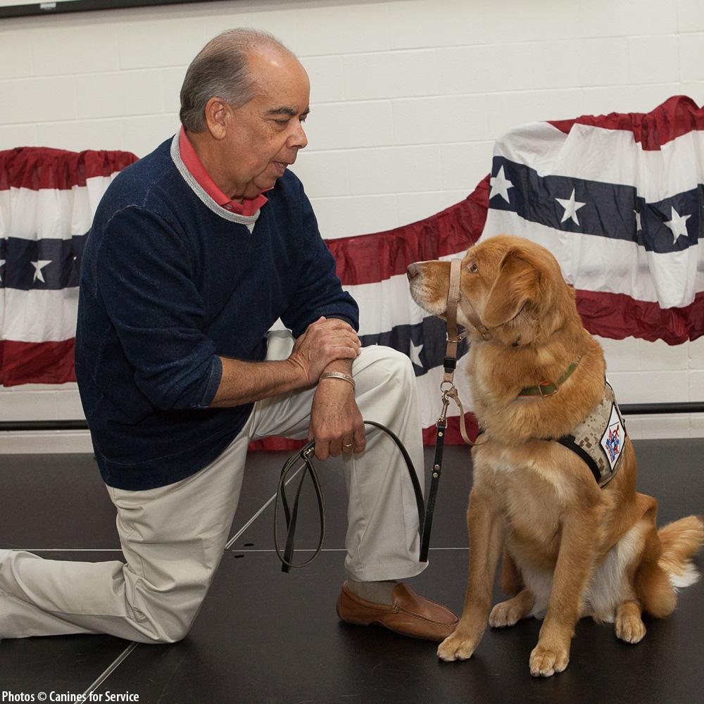Changing Veterans Lives, Four Paws at a Time