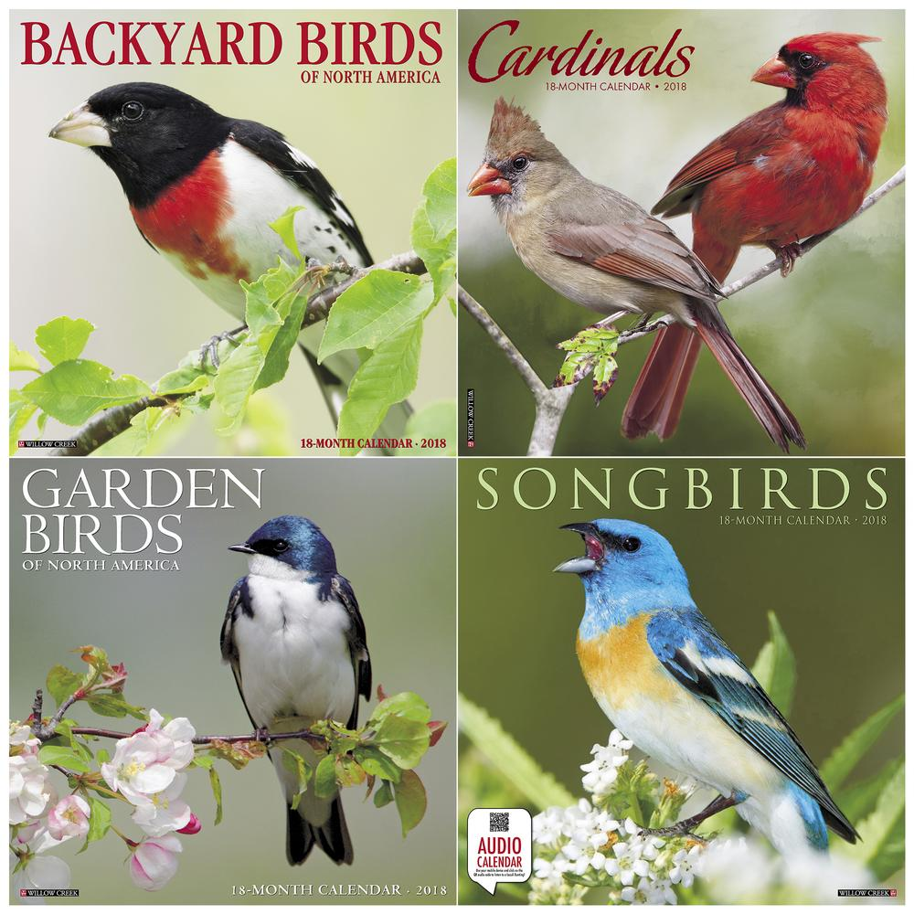birds 2018 calendar collection the rainforest site