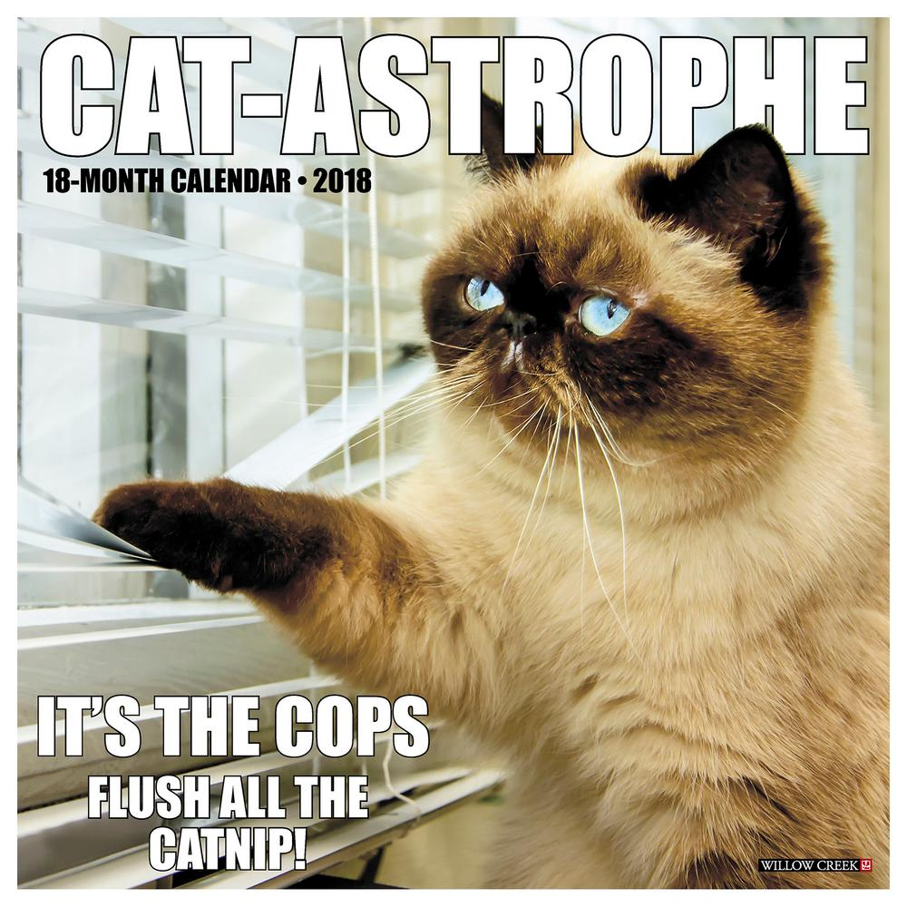 Cat astrophe 2018 calendar the animal rescue site tap reviewsmspy