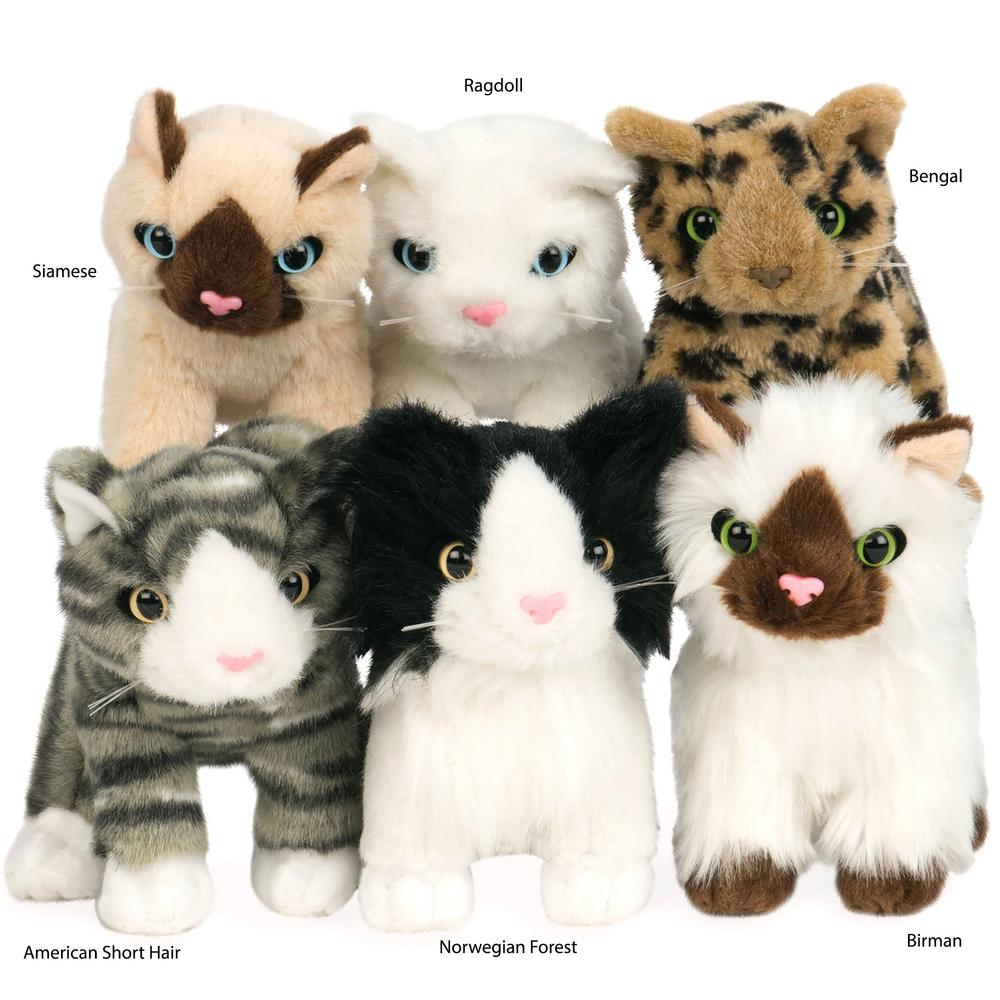 Toys For Your Cat For   Cents